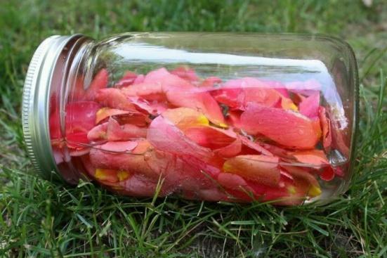 rose jam jar