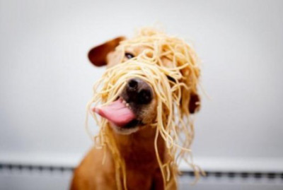 I know there's an end to this spaghetti somewhere!