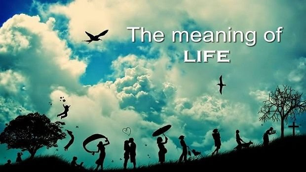 Meaning-of-Life-Neil-deGrasse-Tyson