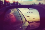 birds-car-city-heart-Favim.com-2137130