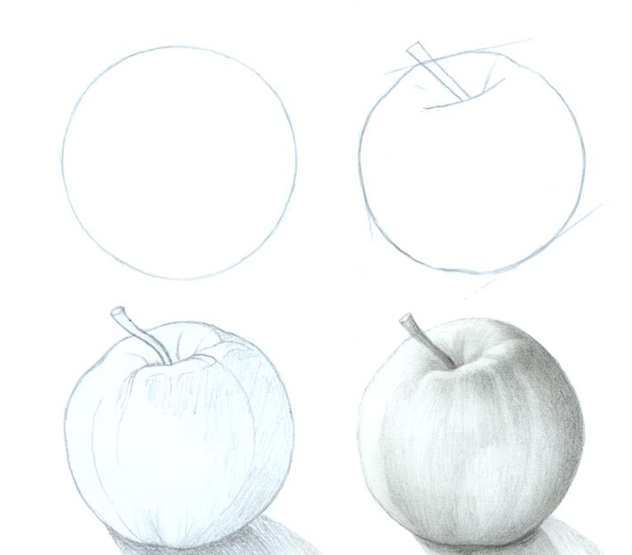 apple_step_by_step_drawing