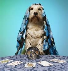 WATCH: Pet Psychic Medium Connects With Dog's Spirit | The Dog ...